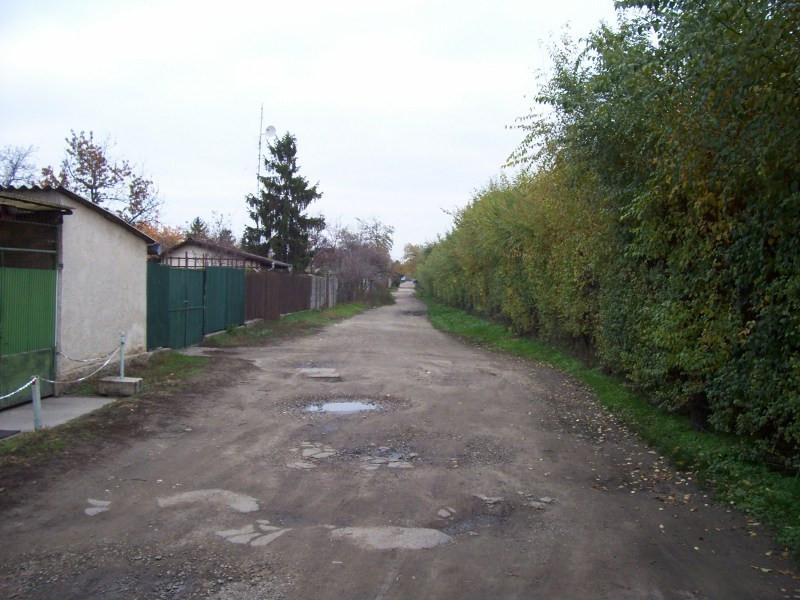 Kosd utca, földút
