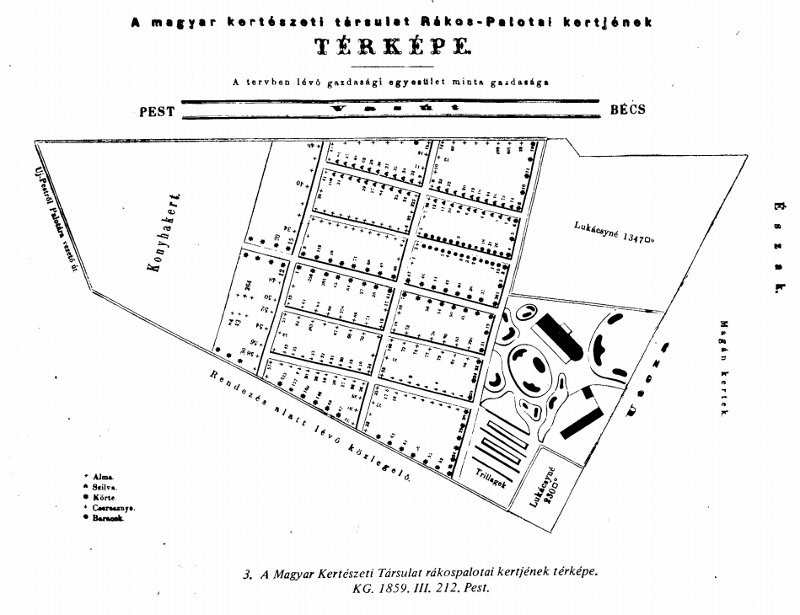A Magyar Kertészeti Társulat rákospalotai kertjének térképe