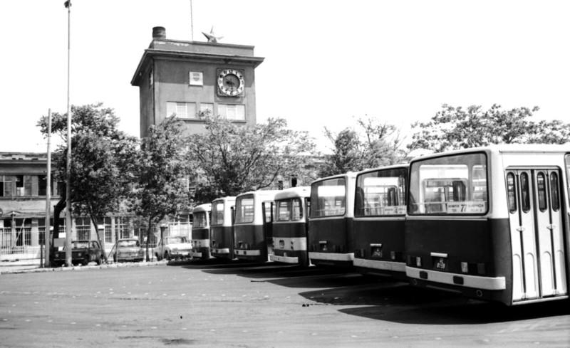 Récsei buszgarázs, 77-es busz