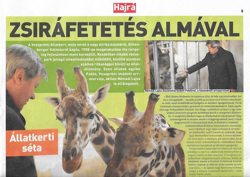 Helyes állatok újra, és Veszprém egyik fő attrakciója, az állatkert