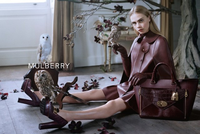 The Strange: mulberry-fall2