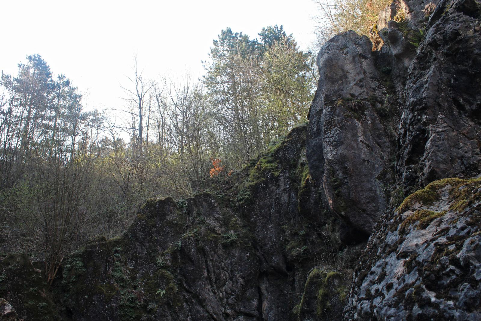 20170402-16-Urkut-CsardahegyiOskarszt