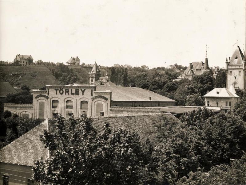 Budafok-1937Korul-Torley-fortepan.hu-118820