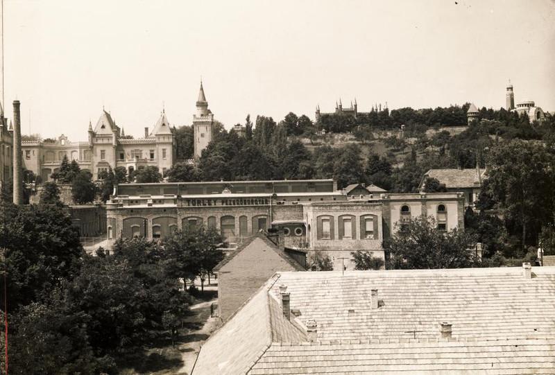 Budafok-1937Korul-Torley-fortepan.hu-118821