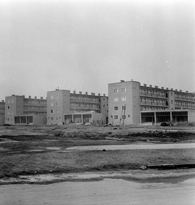 Csillagtelep-Csepel-1959Korul-VenuszUtca-fortepan.hu-116860