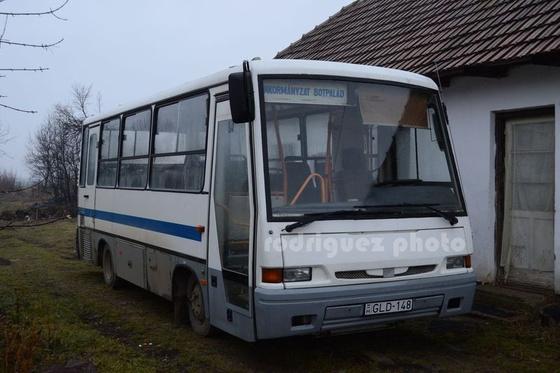DSC 1 (163)