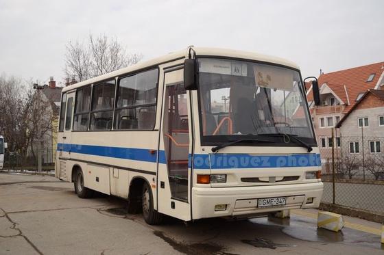 DSC 1 (278)