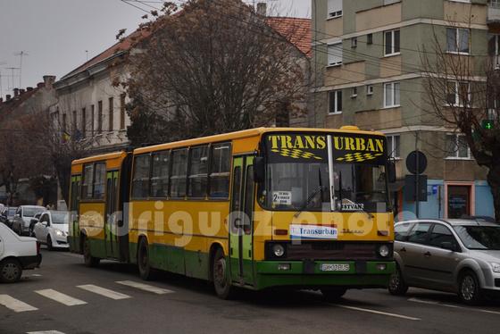 DSC 8374