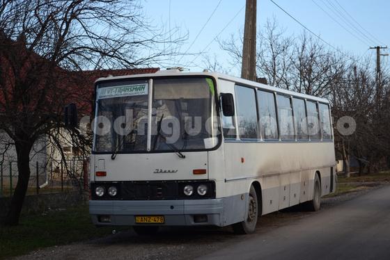 DSC 8522