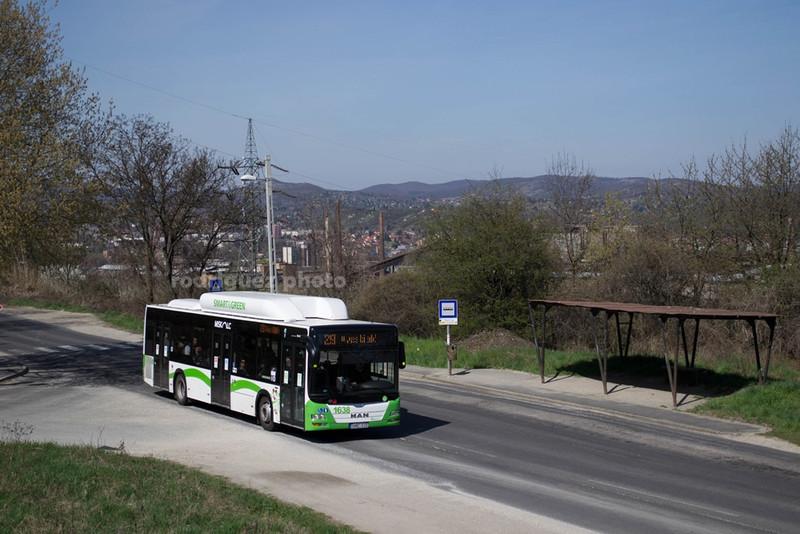 DSC 7069