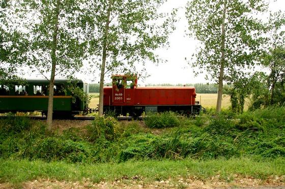 DSC1458