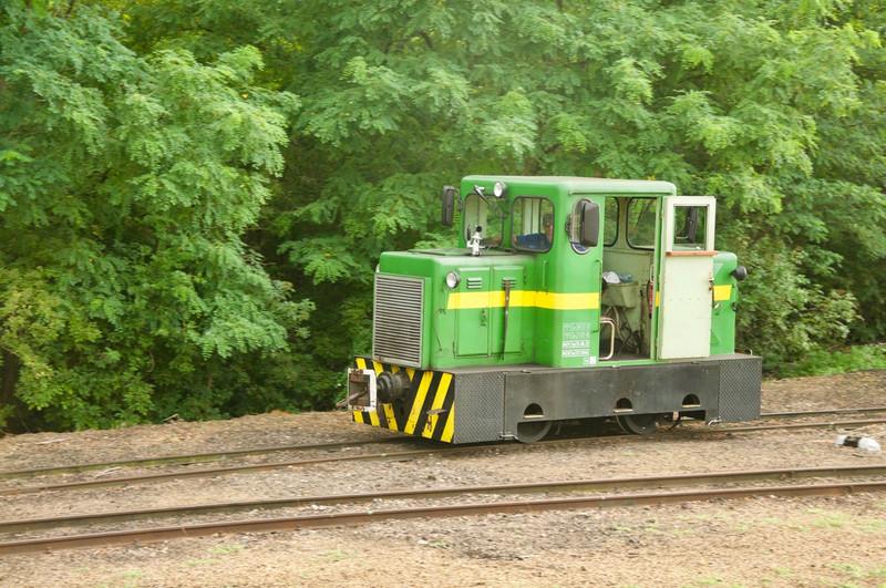 DSC7333