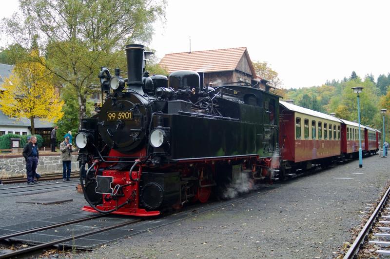 DSC8334