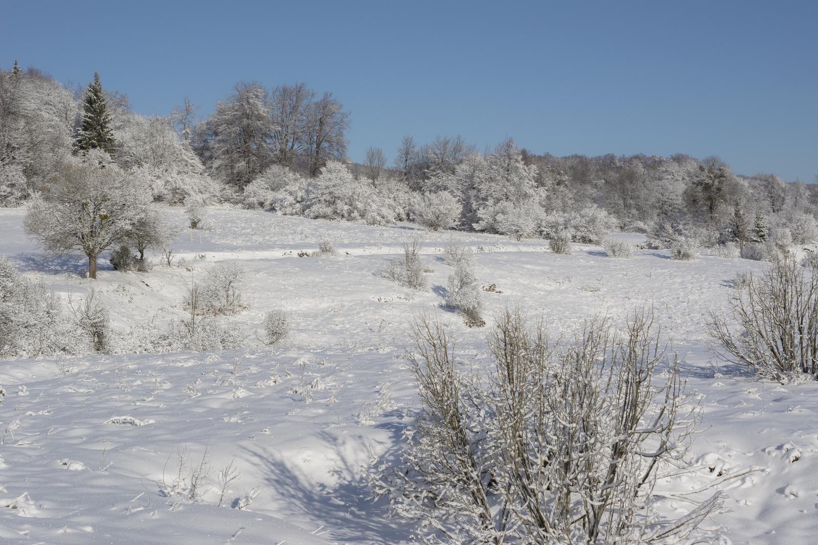 Tél a Bükk fennsíkon