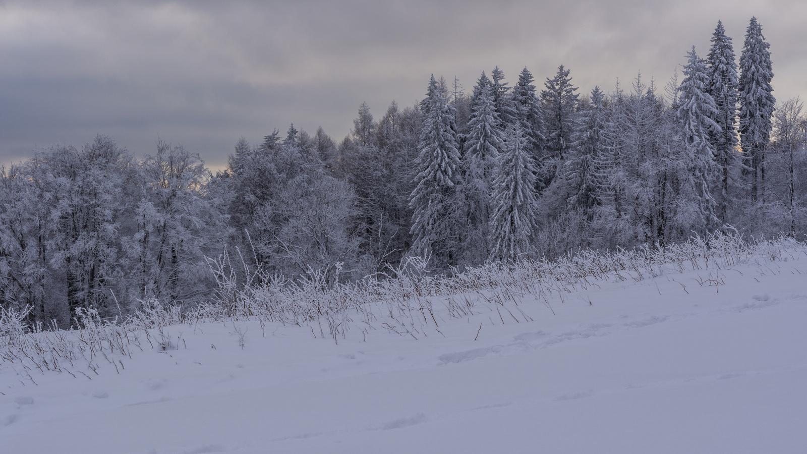 Bánkúti tél