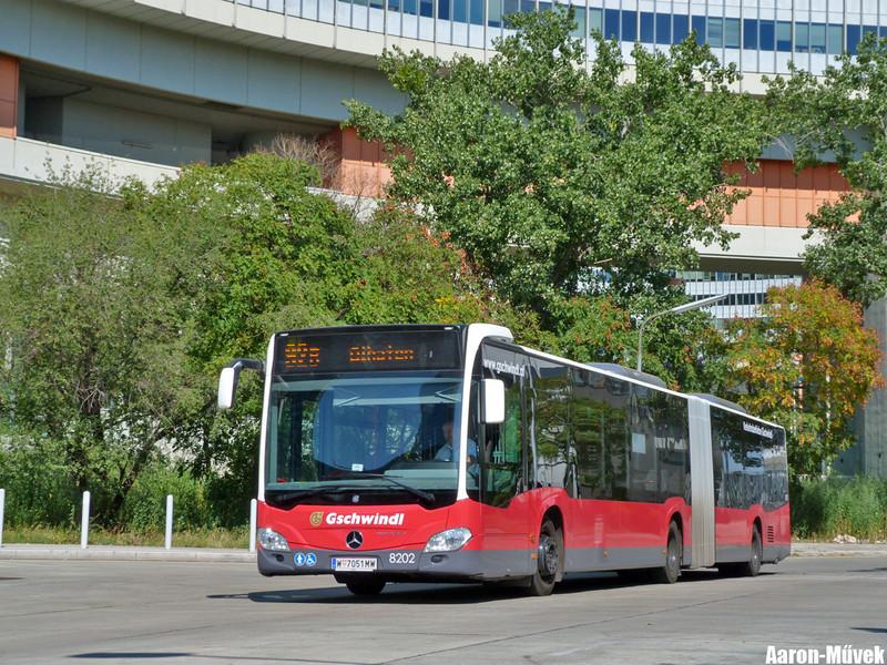 Tramwaytag 2013 (19)