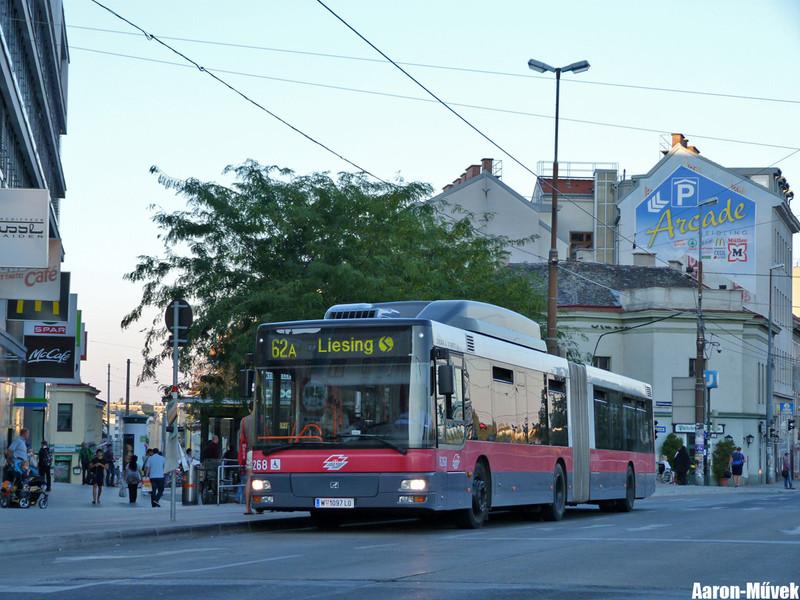 Tramwaytag 2013 (26)