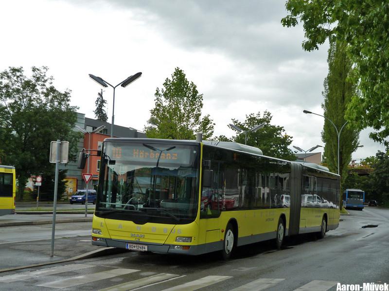 Zeawas Vorarlberg (29)