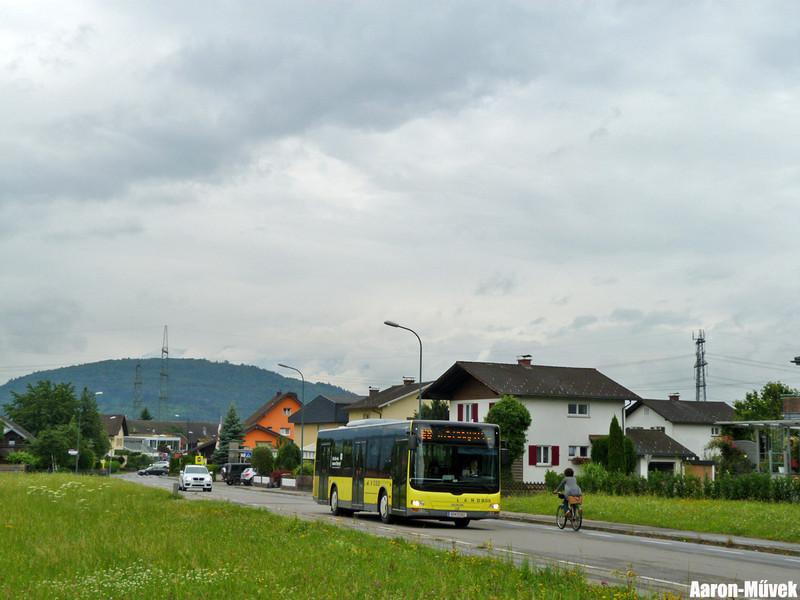 Vorarlberg (7)