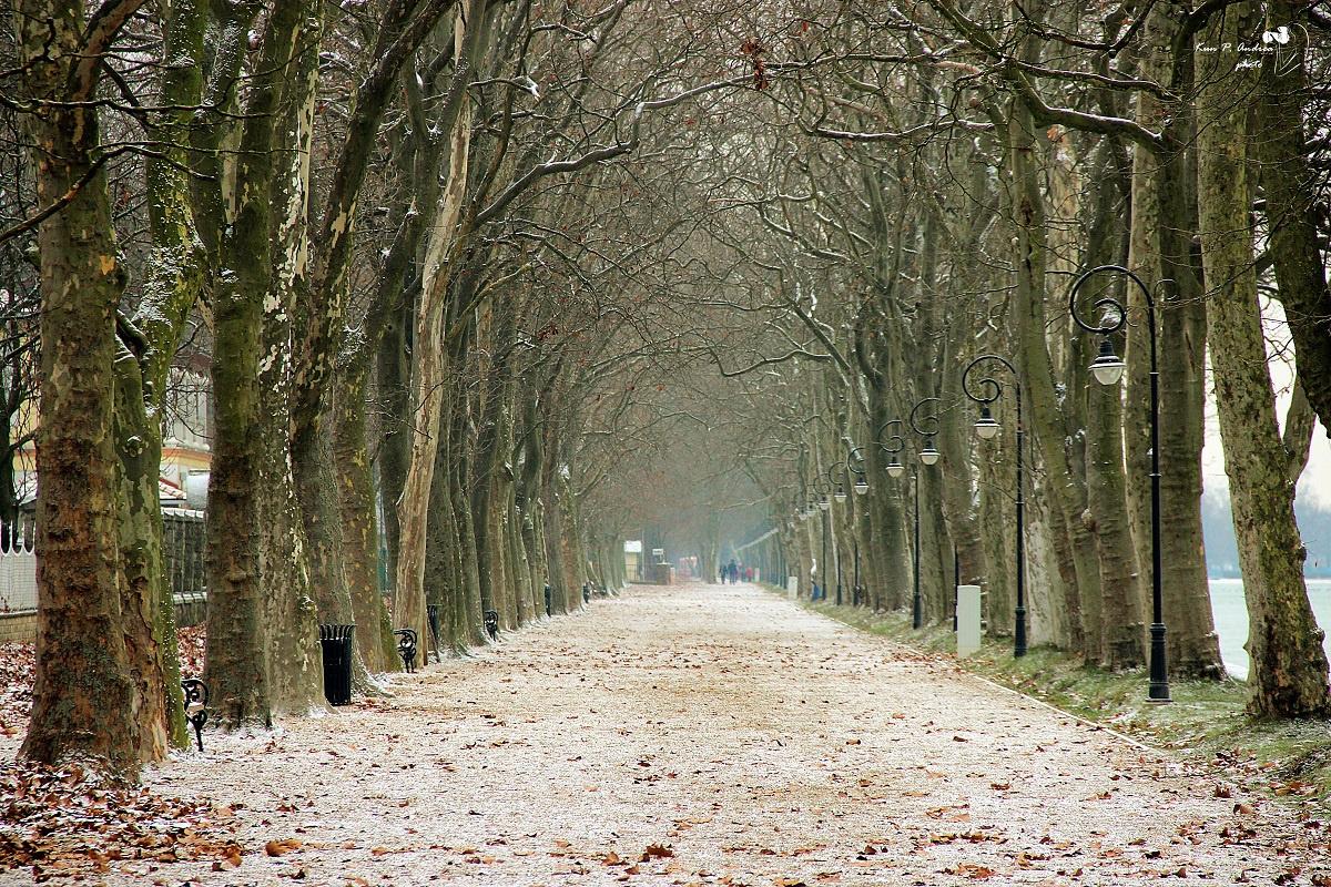 Balatonföldvár, Kvassay sétány télen.