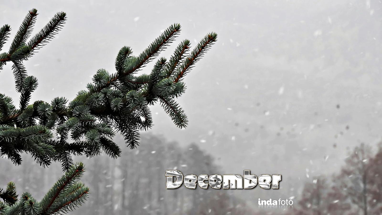 2560x1440 december.png