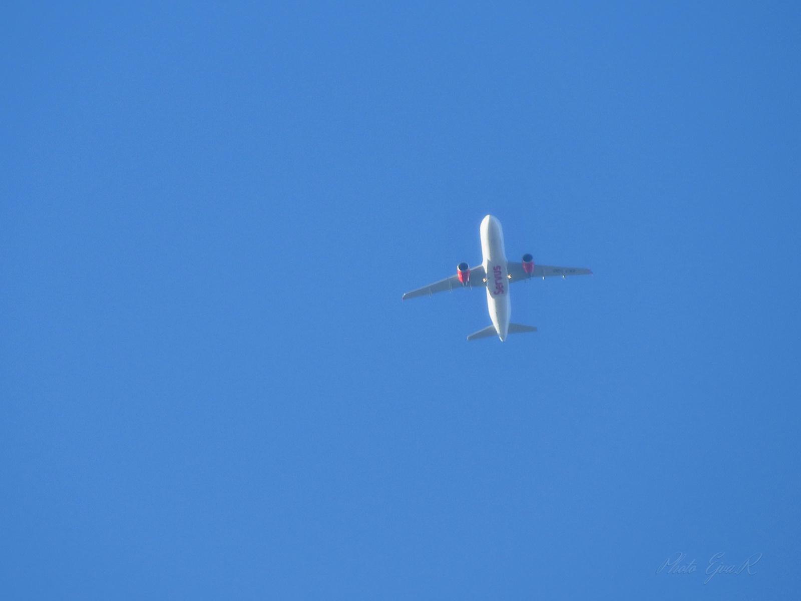 Servus repülő