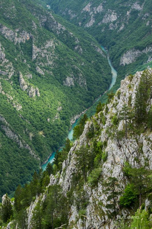 pdave: Tara kanyon