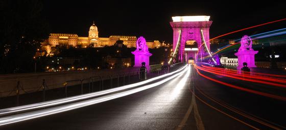 Molnár Zsolt Egészség hídja