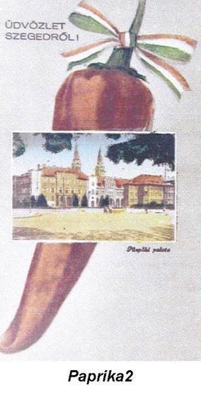 Szeged és paprika - forrás: Röszkei Paprika Park