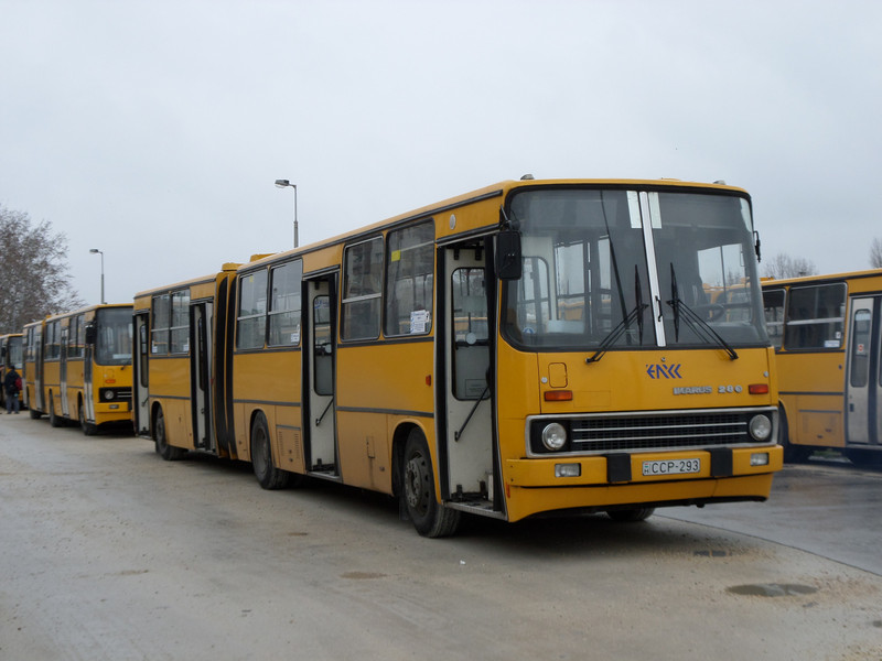 SAM 1353