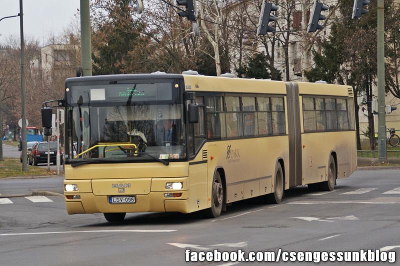 LSV-096