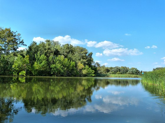 LACI13: Tisza-tó, Tiszafüred és környéke! - indafoto.hu