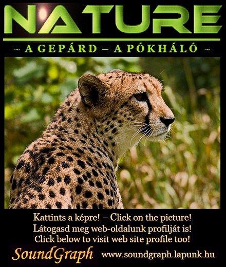 Nature - L