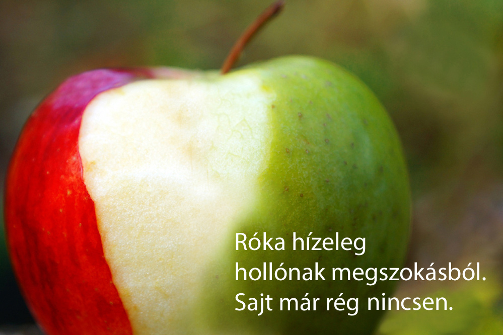 haikuk 10