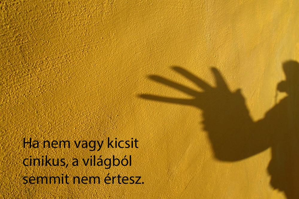haikuk 21