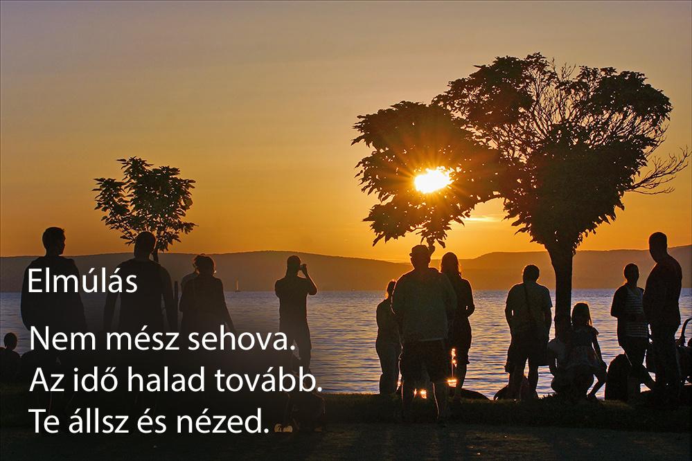 haikuk 77
