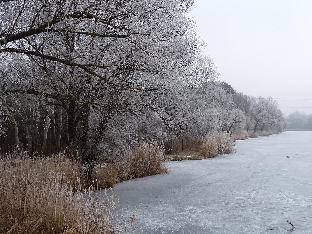 Veresegyház - tó part 15