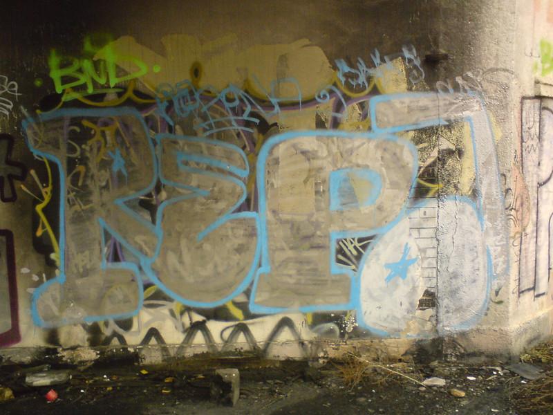 221- Repa