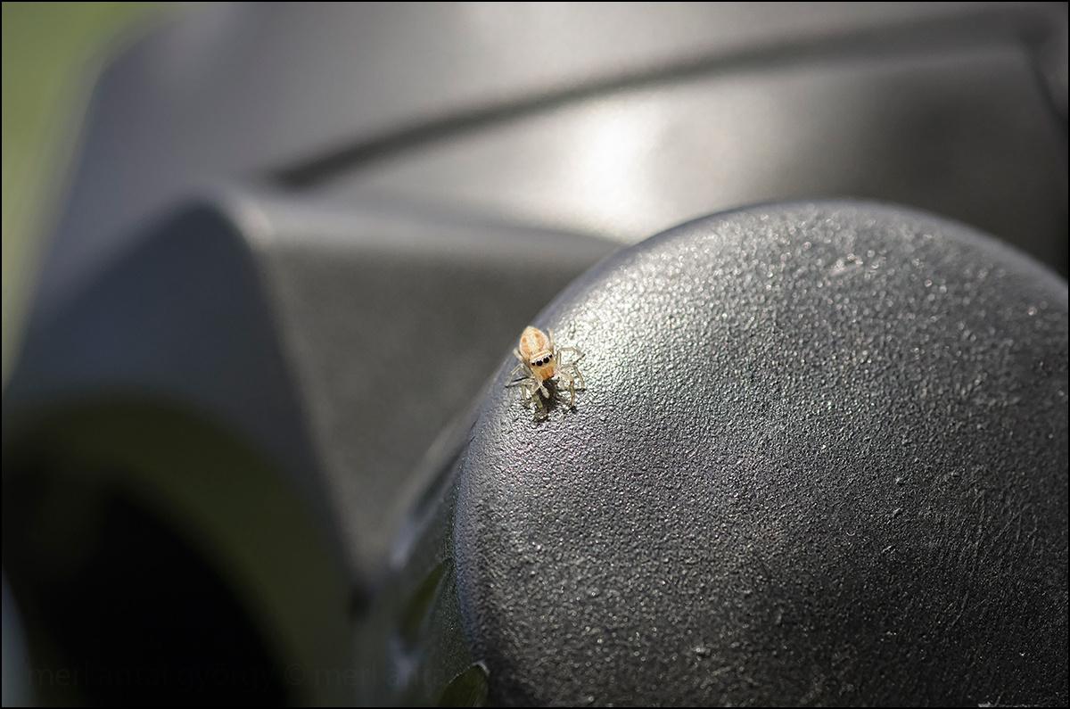 ugrópók