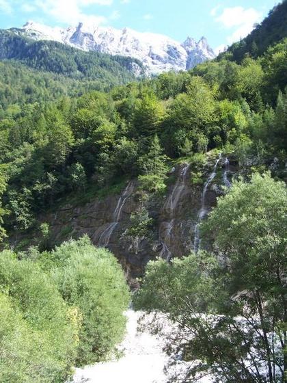 Fedor: vrsic 18
