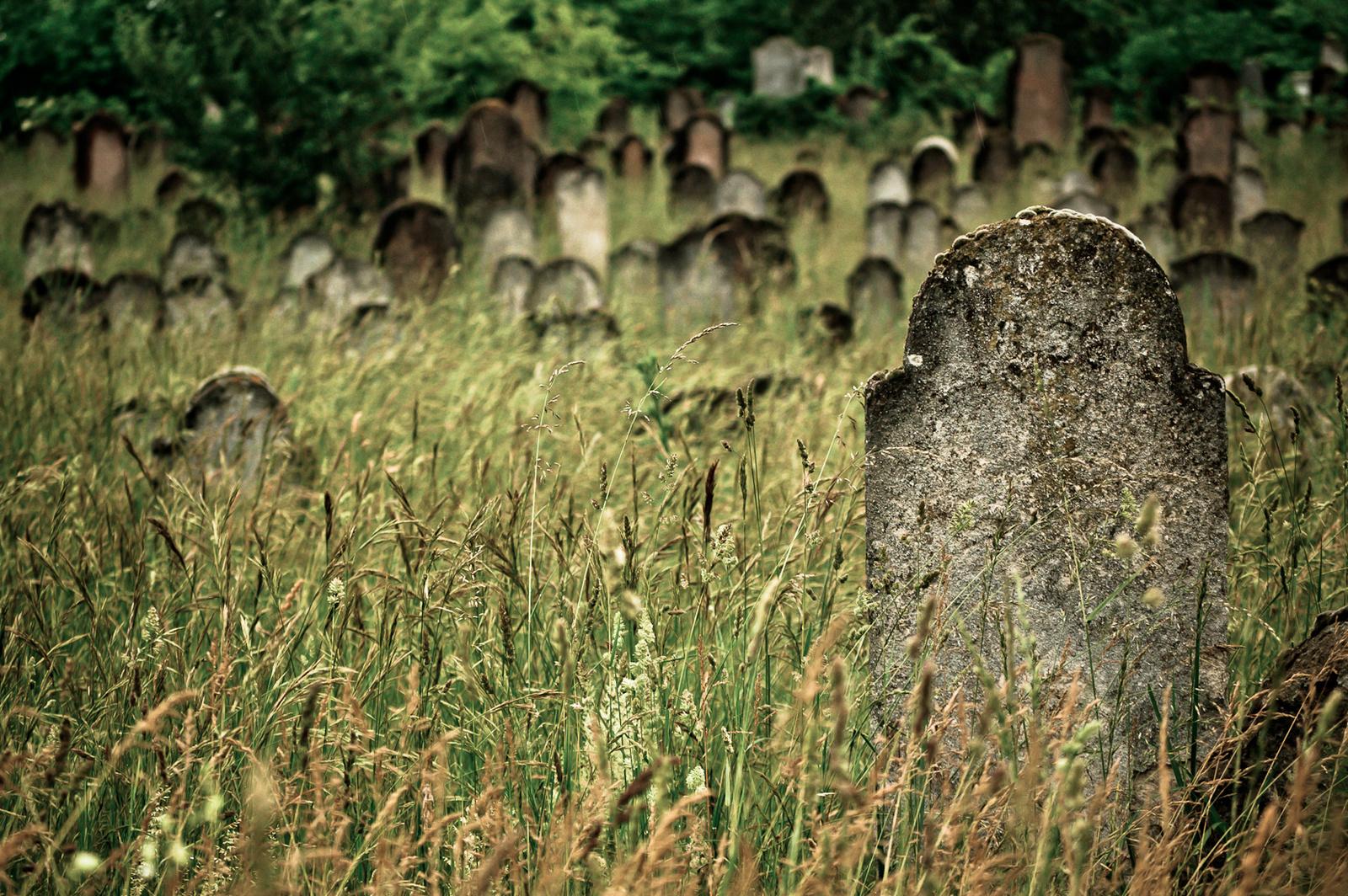torobala: lovasberényi temető