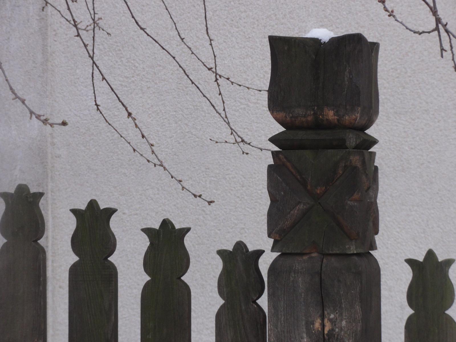 Tulipános kerítés.