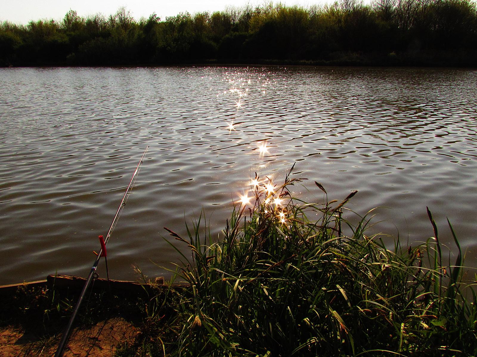 csillagok a tóban