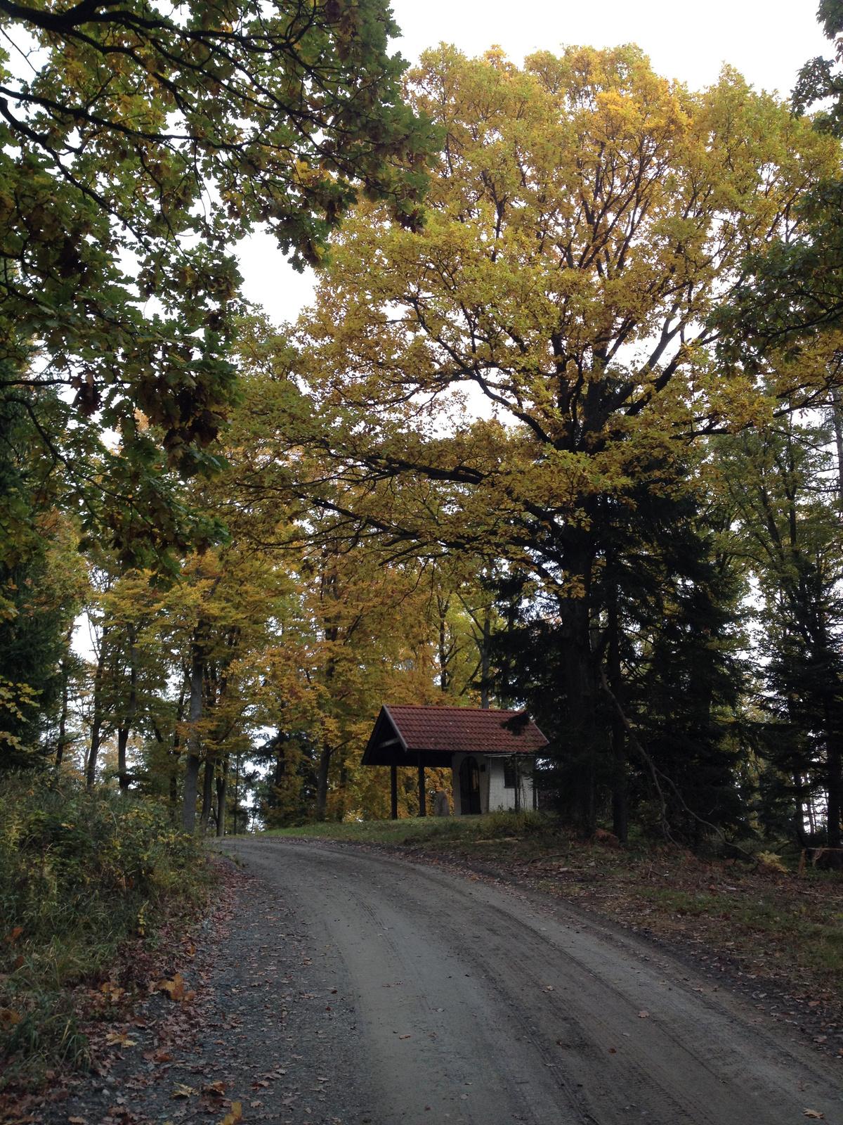 IMG 0085 Hubertus kápolna (Batthyany emlékhely)