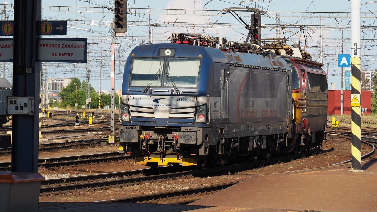 SK-RAILL 91 56 6383 209-4, SZG3