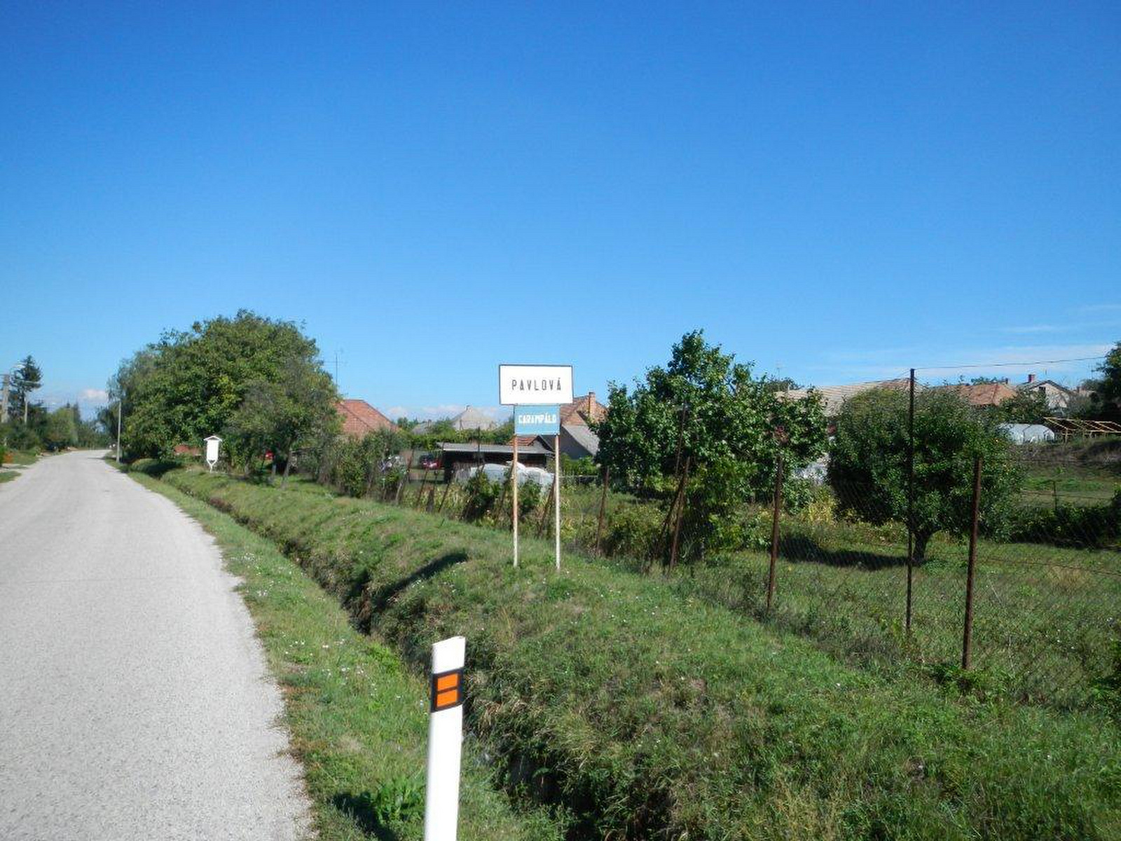 DSCN1394