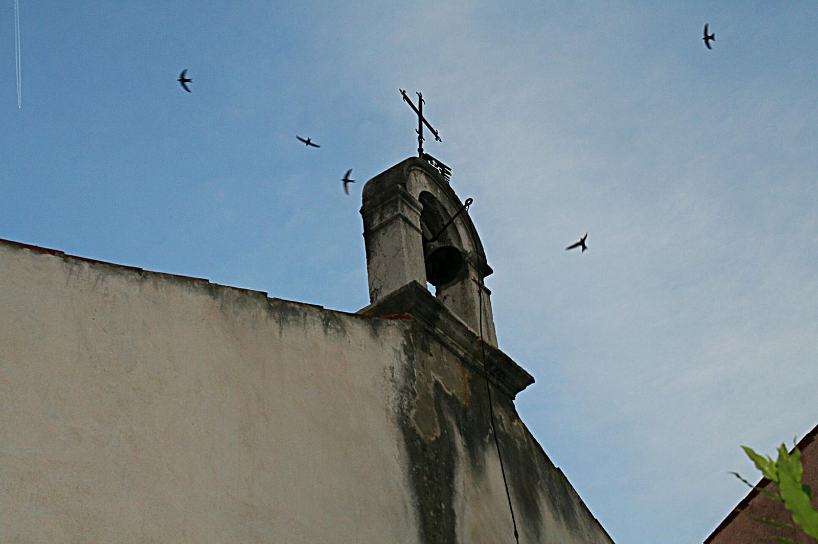 Ahol még a madár is jár