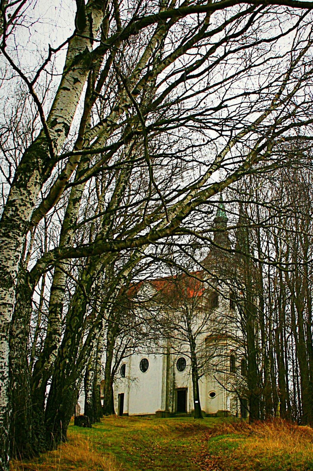 Templom az erdőben