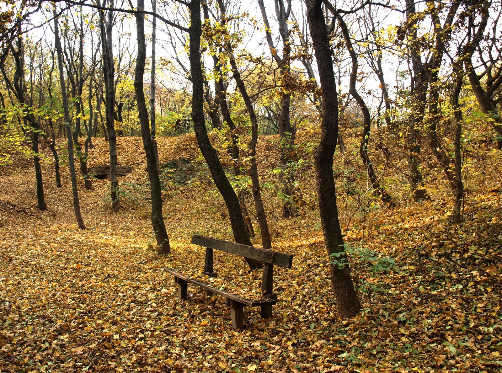 levetették az őszi ruhájukat