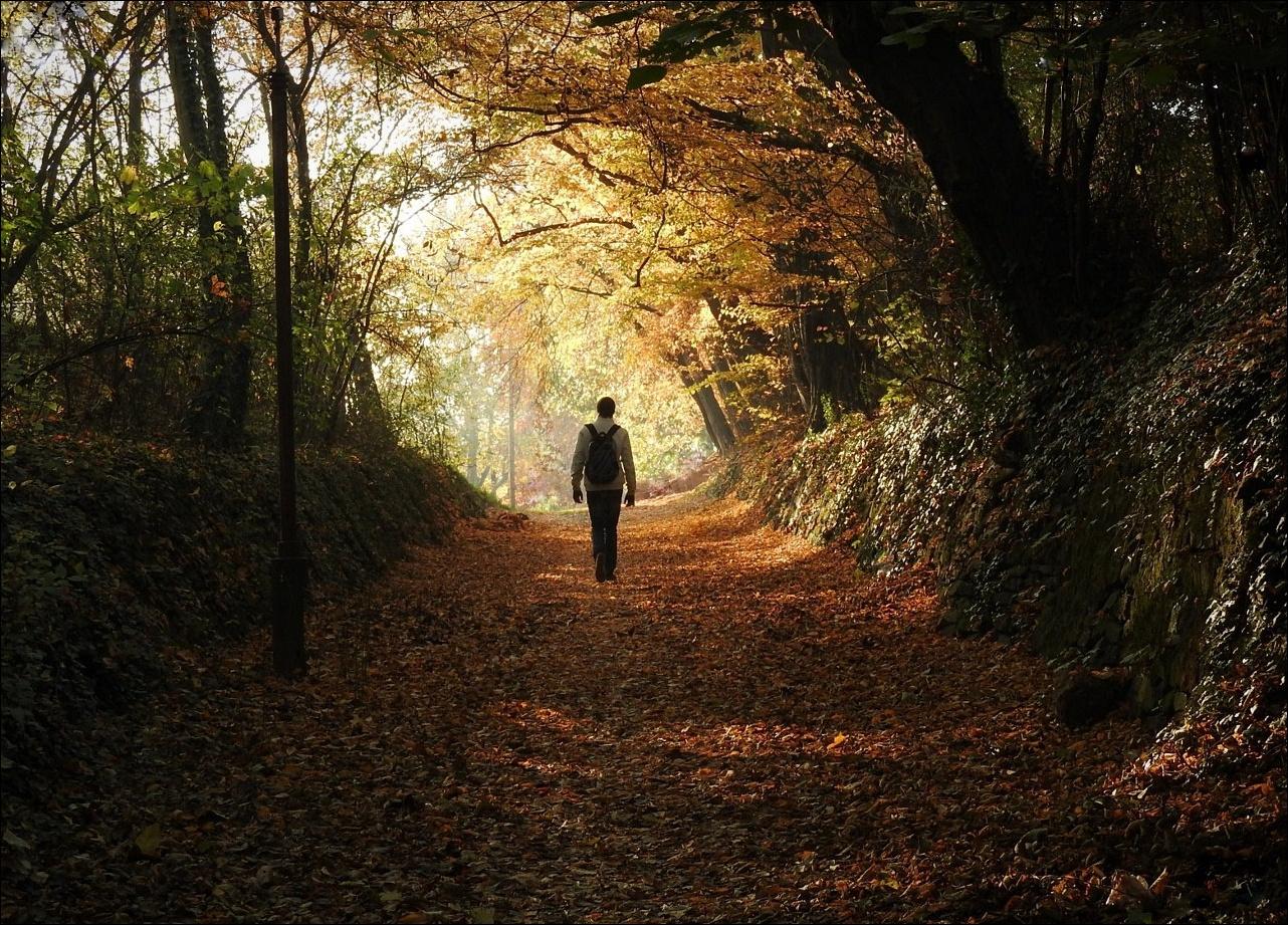 Séta az őszi alagútban